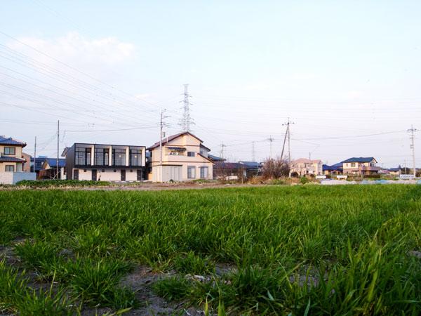 pfl-01.jpg